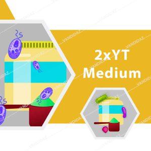 محیط کشت میکروبی 2xYT  Medium یا ۲× Yeast Extract Tryptone