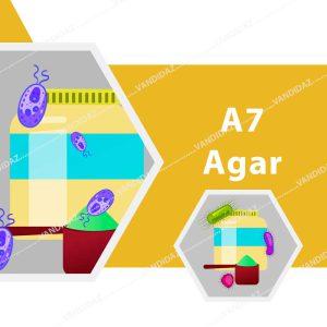 محیط کشت میکروبی A7 Agar