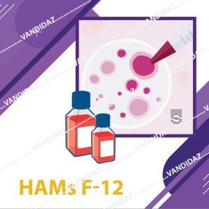 محیط کشت Hams F12