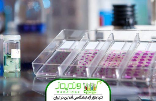 نمونه گیری از بافت مناسب برای آزمایشات کشت سلولی بخش اول