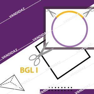 انزیم محدود کننده بی جی ال یک