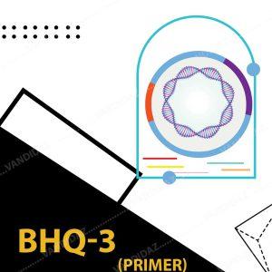 فروش پرایمر BHQ-3
