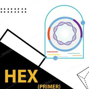 فروش پرایمر HEX