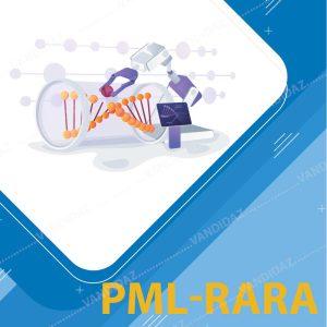 فروش کیت تشخیص PML-RARA