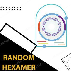 فروش پرایمر Random Hexamer