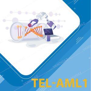 فروش کیت تشخیص TEL-AML1