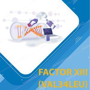 فروش کیت تشخیص (Val34Leu)Factor XIII