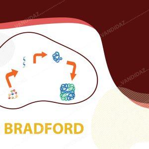 فروش کیت سنجش پروتئین برادفورد