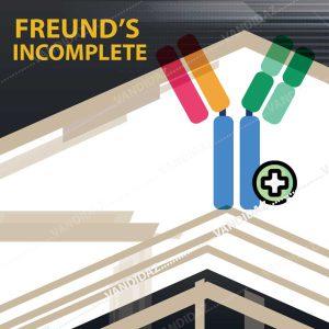 فروش ادجوانت ناقص فروند (Freund's incomple)
