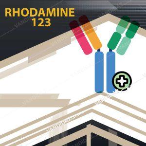 فروش رودامین Rhodamine 123