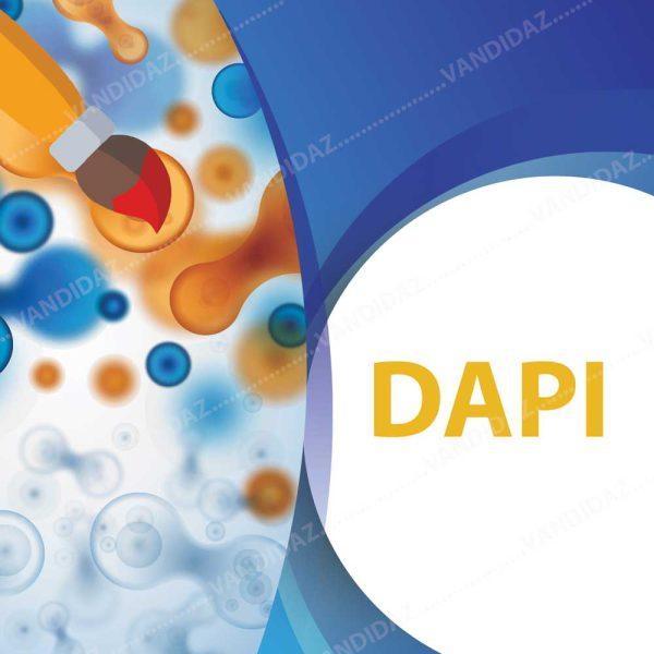 فروش رنگ DAPI